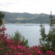 Kozan Barajı