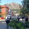Kozan'da 2752 Sokakta Ağaçların Budama işi yapıldı